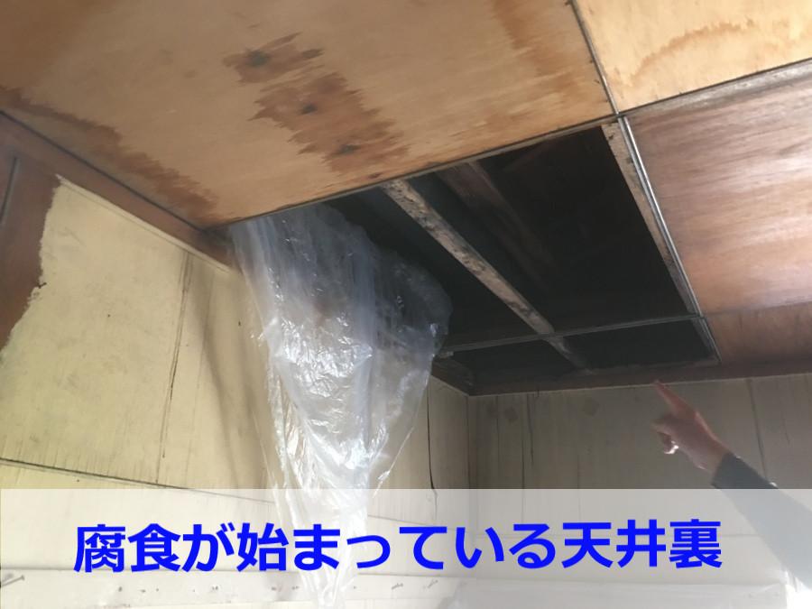 腐食が進行している天井裏