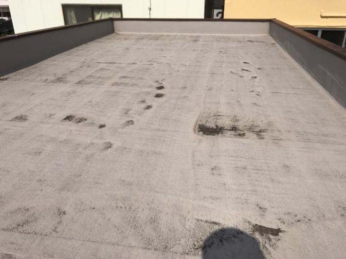 防水調査時の陸屋根