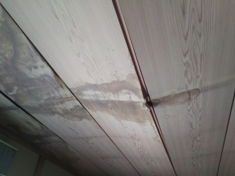 雨漏り箇所調査 天井ヵら雨染み