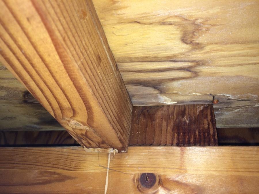 雨漏りよる屋根裏の雨染み