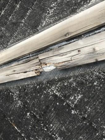 下地の貫板の腐食