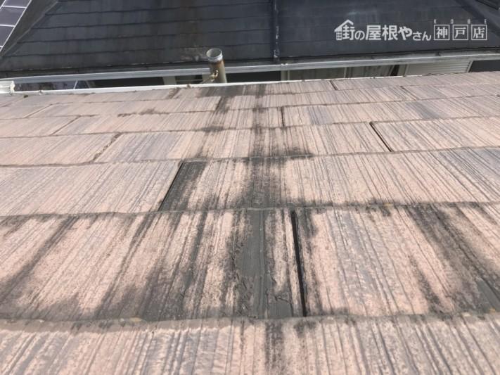 屋根の塗膜の剥がれ