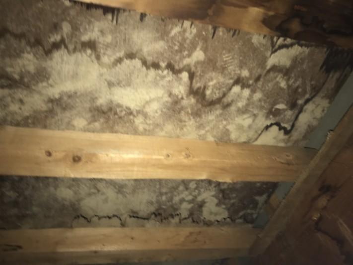 雨漏り箇所、直上の屋根裏