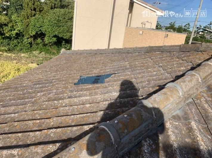 大和スレート葺き屋根 屋根材の割れ部分
