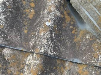 大和スレート葺き屋根釘の打ち込み