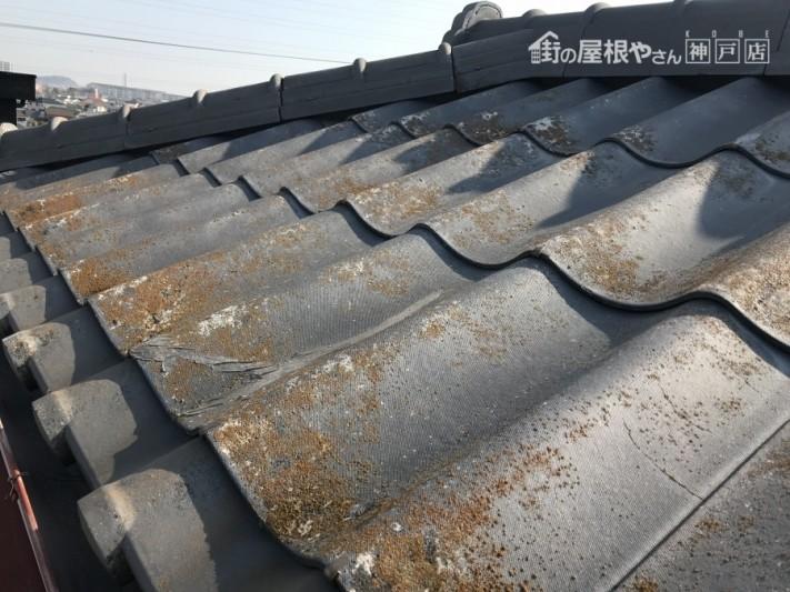 かわらUの増築部分の屋根