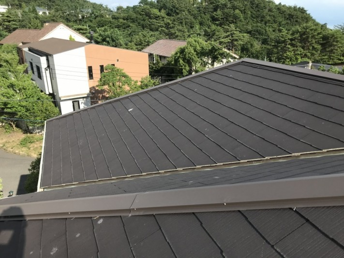 雨漏り屋根の様子
