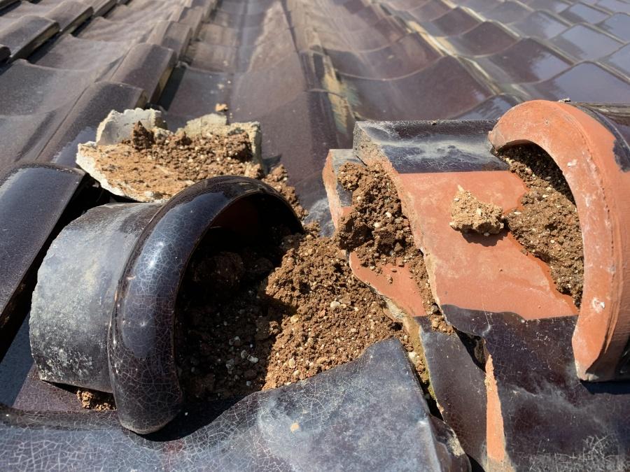 棟の下地土が濡れて崩れている状態
