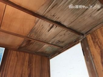 居室雨漏り天井