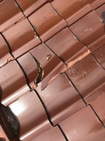 劣化して割れた瓦屋根