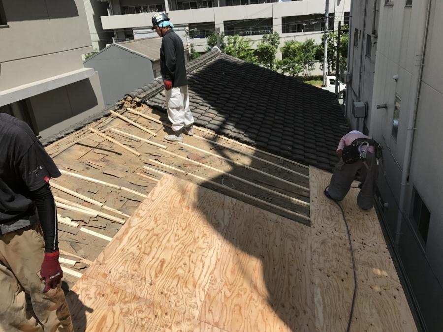 胴縁に新しい屋根の下地材、構造用合板を張ります。