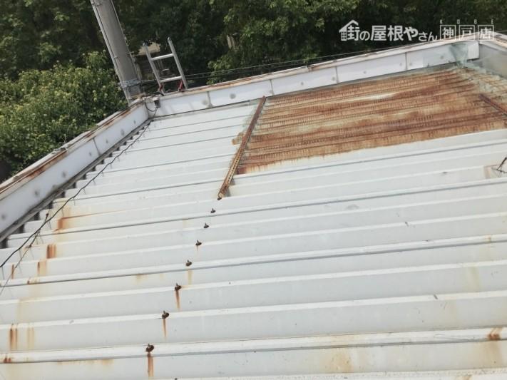折半屋根に上り調査開始