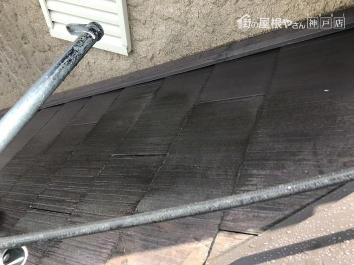 屋根面の苔