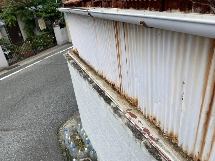 壁トタン波板の様子