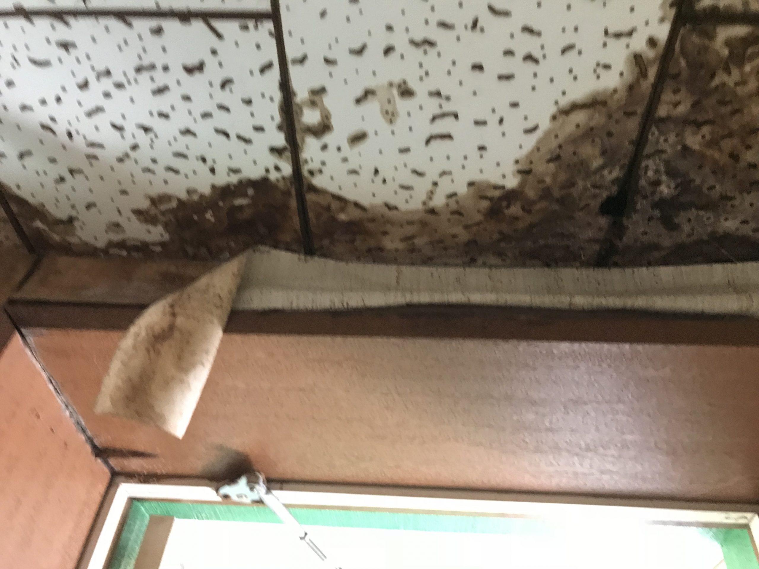 屋上階下雨漏り