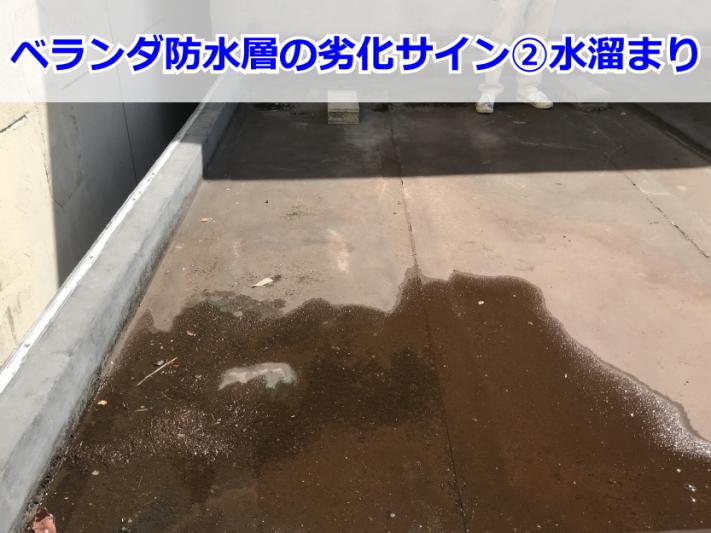 防水層に溜まった雨水
