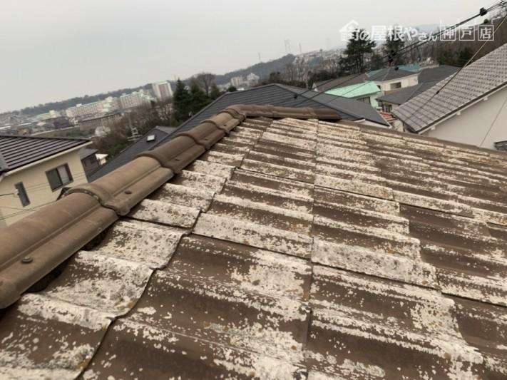 かわらU葺きの屋根