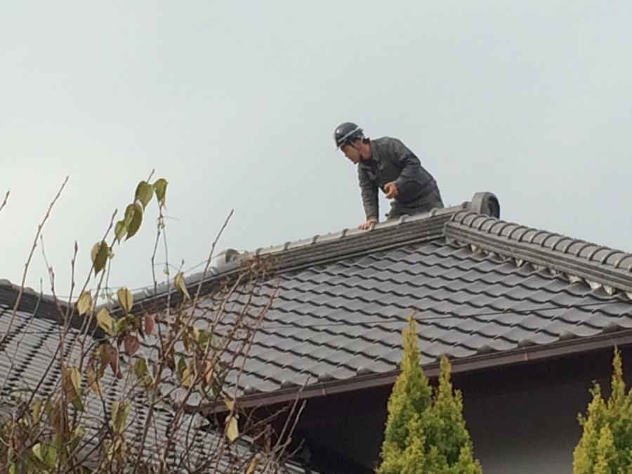 瓦屋根に実際に職人が上がり調査中