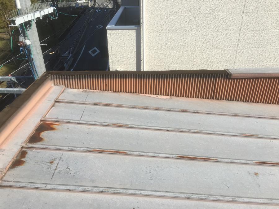 雨漏り箇所調査 屋上の様子