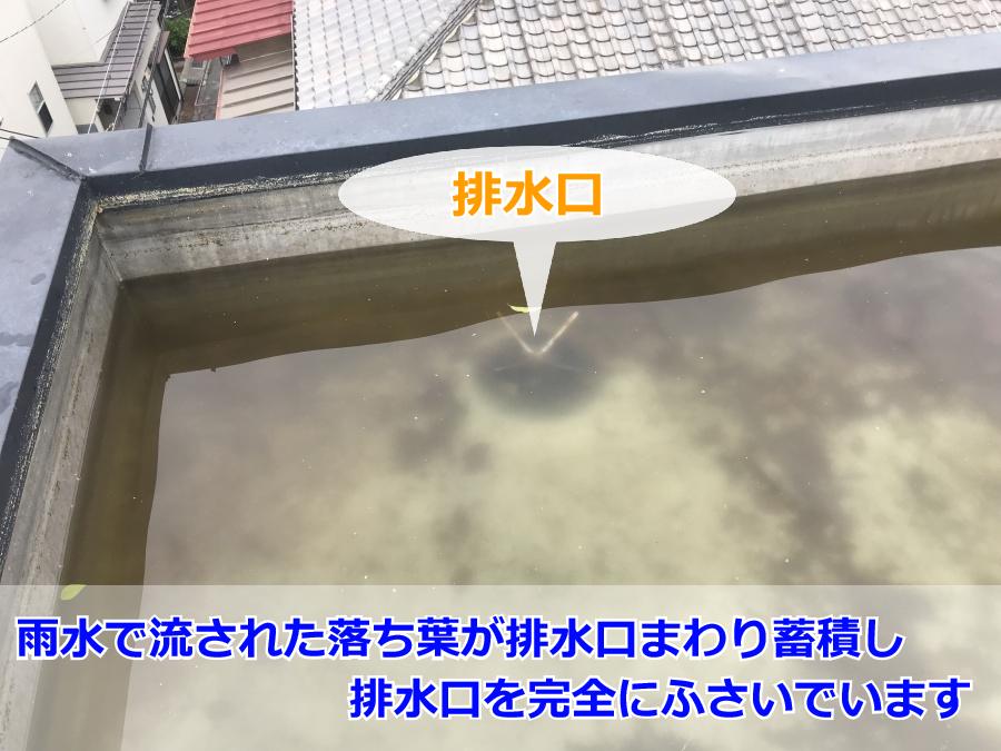 屋上の詰まった排水口