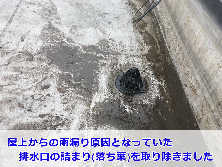 屋上の排水口詰まり(落ち葉)を除去した後の排水口まわりの様子