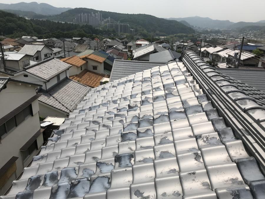 屋根は綺麗な状態です。
