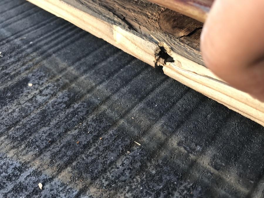 棟板金を止めていた貫板を抉るほどの強風だったのでしょう