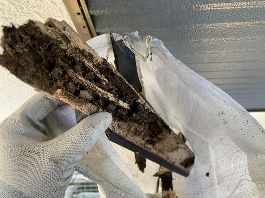 軸組の垂木は雨水によりスカスカに劣化しています。