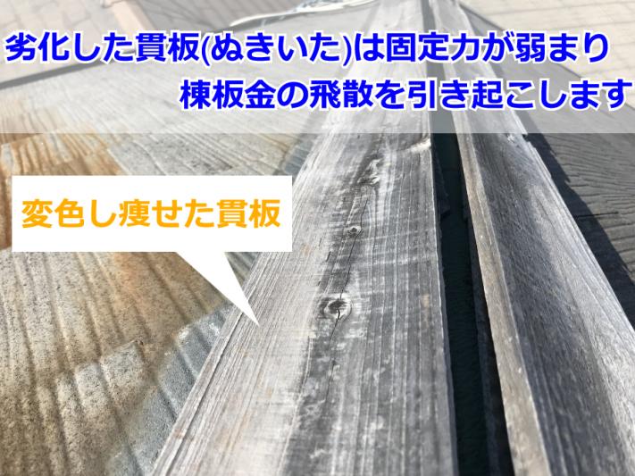 棟板金の飛散につながった貫板の劣化状況