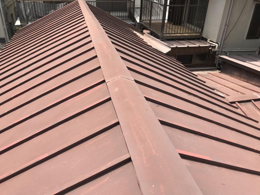 大屋根の瓦棒葺き 雨漏り調査