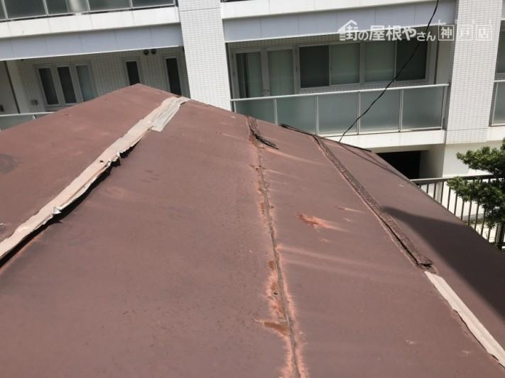 平板板金葺き 雨漏り調査