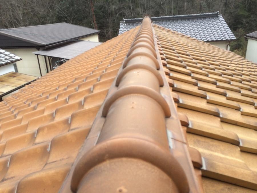 屋根点検の様子