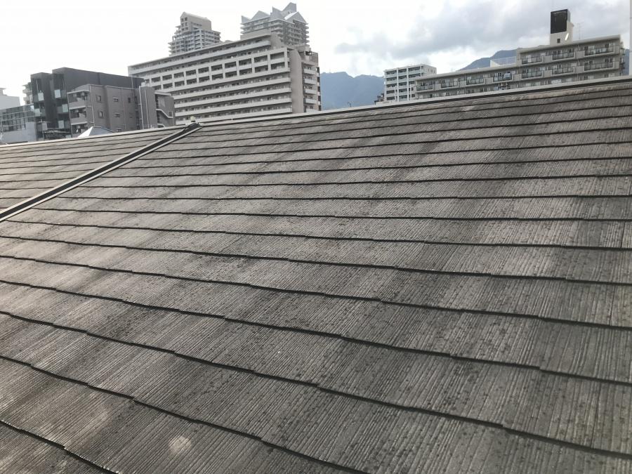 カラーベスト屋根の様子。塗膜が剥がれ、苔が繁殖しております。