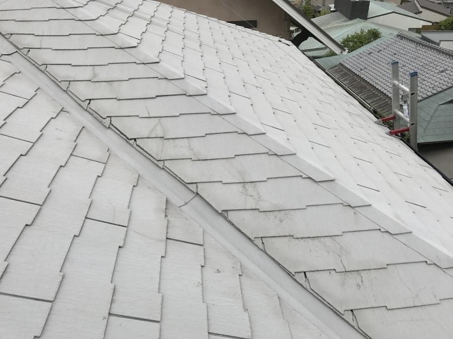 ザルフ葺き屋根