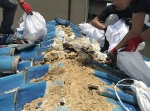 伊丹市 屋根補修工事の様子