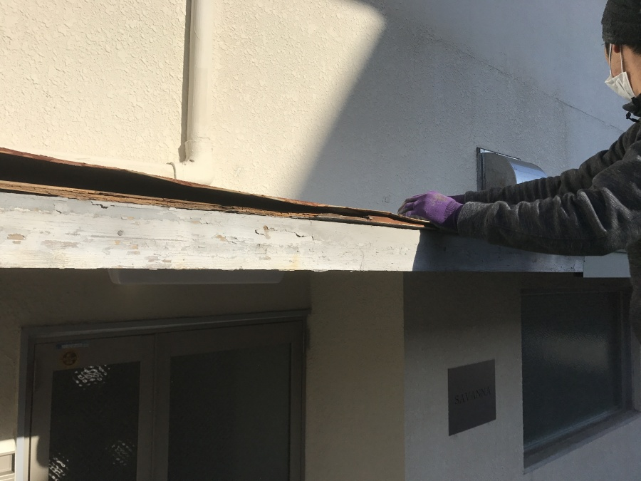 既存の屋根の状態をチェックしています。