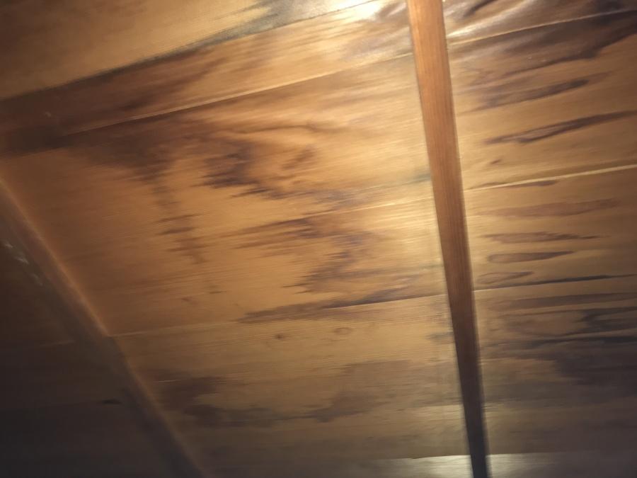 雨漏り箇所天井