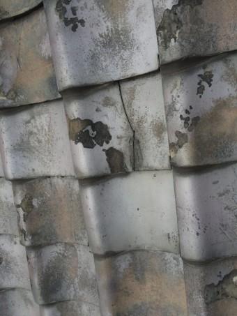 雨漏り個所付近の瓦が割れていました。