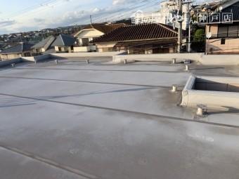 雨漏り調査 陸屋根の様子