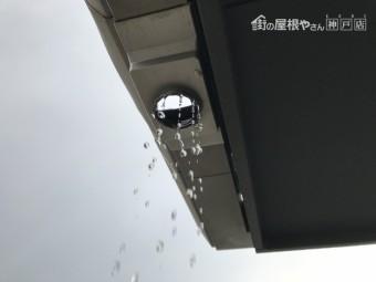 屋根の軒樋の集水器から、雨水が落ちてきています。