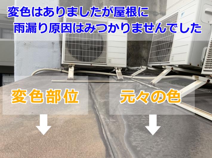 東灘区で雨漏り調査(屋根)