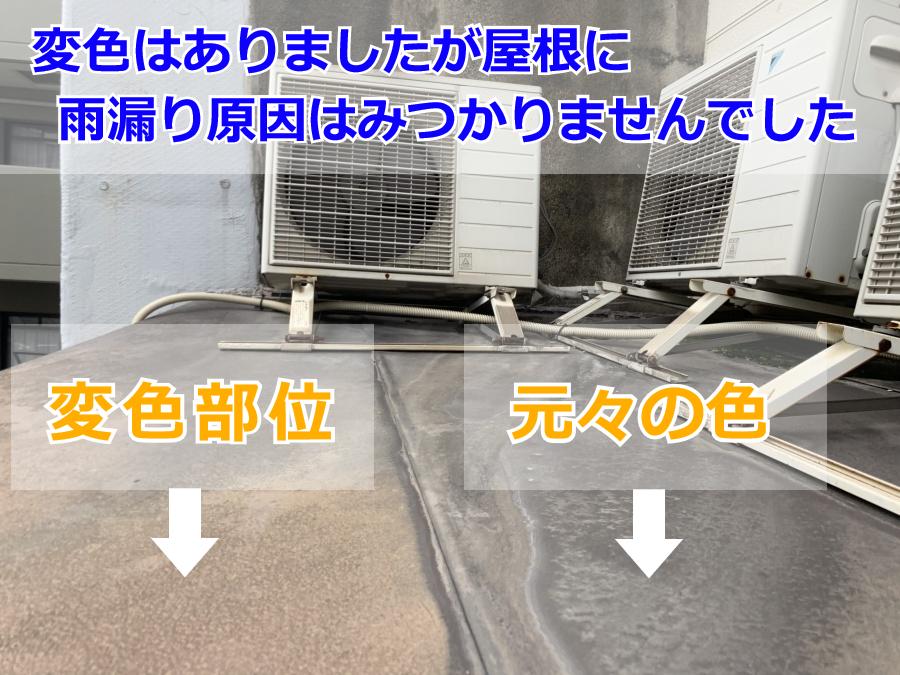 雨漏り調査(屋根)