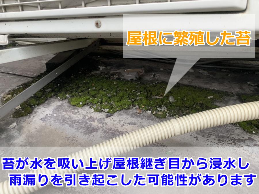 雨漏り調査(屋根上の室外機下部)