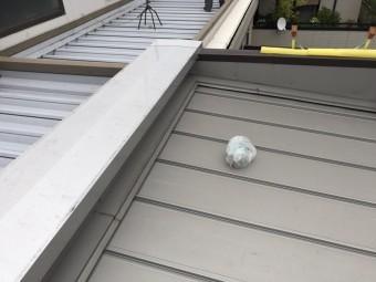 屋根にゴミ
