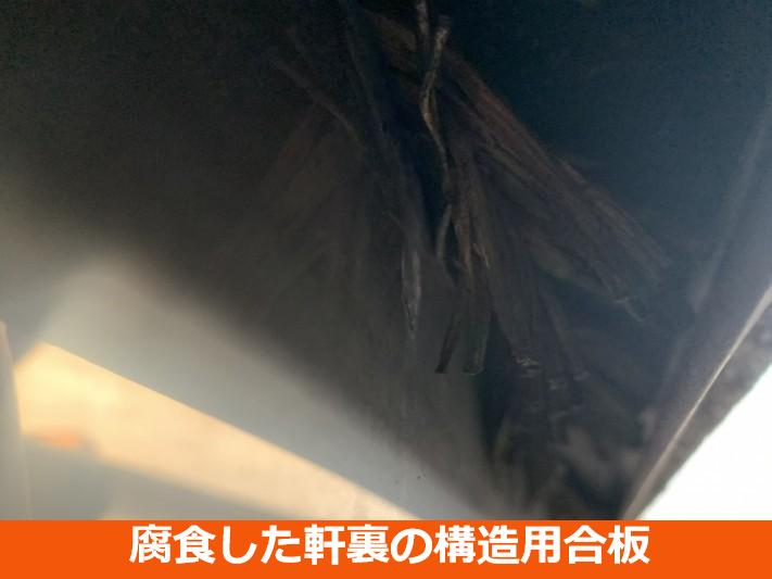 腐食した軒裏の構造用合板