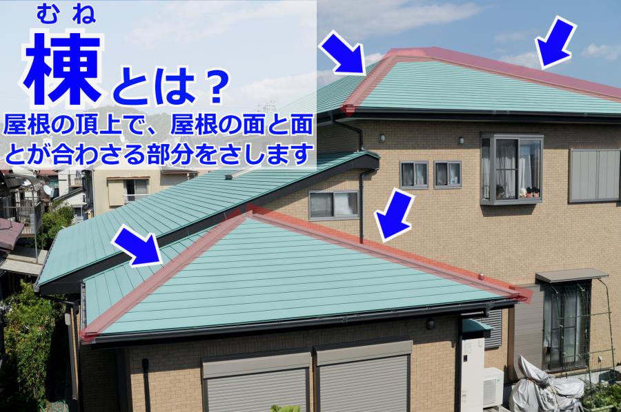 雨漏りの原因となりやすい棟とはどこをさすのか?解説図